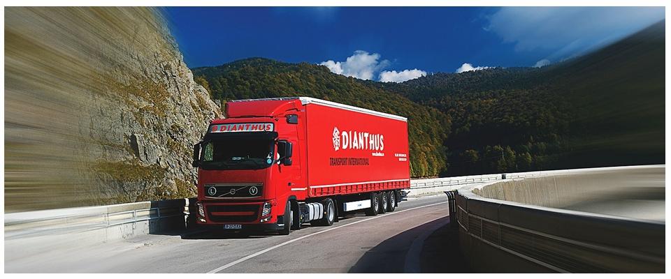 Dianthus International Company Transport Marfa